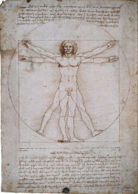 The proportions of the human body in the manner of Vitruvius (The Vitruvian Man) © Ministero per i Beni e le Attività Culturali, Polo Museale Veneziano